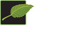K&K Gardens Beautifying the World, One Plant at a Time